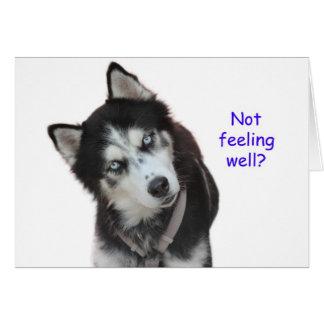 El husky siberiano consigue bien tarjeta de felicitación