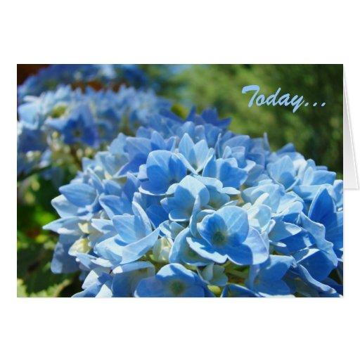 El Hydrangea azul de la naturaleza de las tarjetas