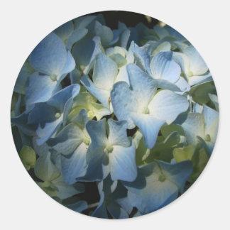 El Hydrangea azul florece la foto floral de la Pegatina Redonda