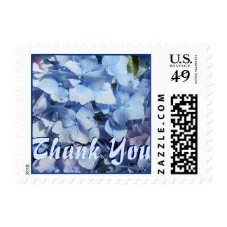 El Hydrangea azul le agradece Timbre Postal