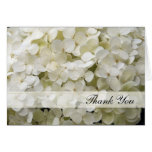 El Hydrangea blanco le agradece tarjeta de nota
