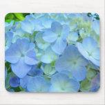 El Hydrangea en colores pastel azul florece los mo Tapetes De Ratones