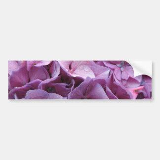 El Hydrangea florece pegatina para el parachoques Pegatina De Parachoque