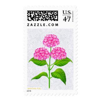 El Hydrangea rosado florece franqueo Sellos Postales