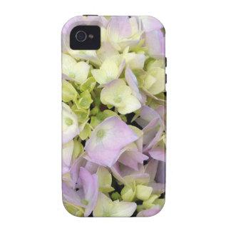 El Hydrangea suave de la primavera florece verde r iPhone 4 Carcasas