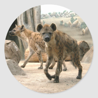 El Hyena toma a un pegatina de la mirada