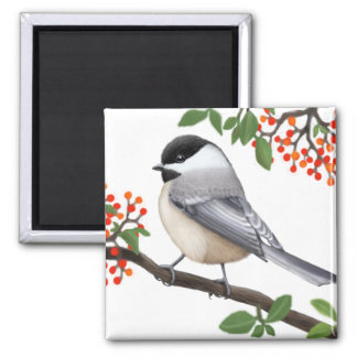 El imán capsulado negro amistoso del pájaro del Ch