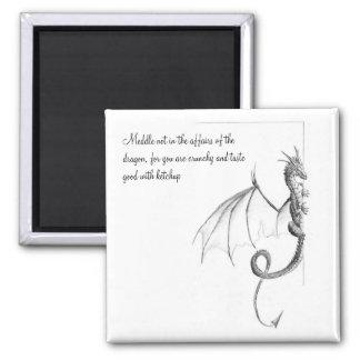 El imán de la página del dragón