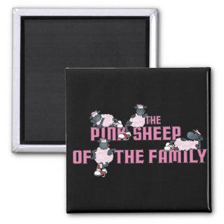El imán rosado del negro de las ovejas