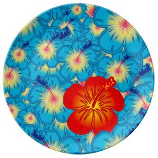 El impar hacia fuera platos de cerámica