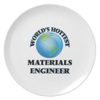 El ingeniero más caliente de los materiales del platos para fiestas