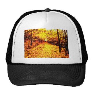 El invierno del otoño hojea los árboles verdes nat gorra