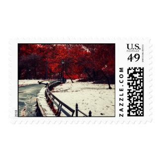 El invierno resuelve la caída en Central Park, NYC Franqueo