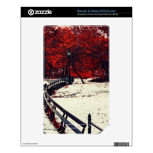 El invierno resuelve la caída en Central Park, NYC NOOK Color Calcomanías