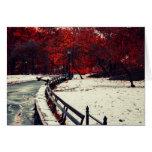El invierno resuelve la caída en Central Park, NYC Tarjeta De Felicitación