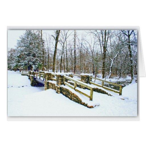 """El """"invierno soña"""" la invitación tarjetas"""