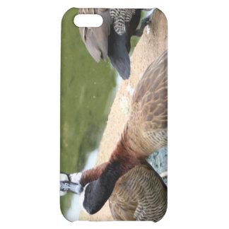 el iPhone 4 no es caja Ducky de la mota del amor
