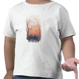 El ir a casa camisetas