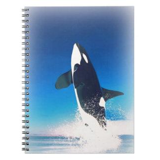 El ir para la orca de la infracción note book