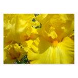 El iris amarillo de las tarjetas de visita florece