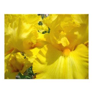 El iris amarillo de papel del libro de recuerdos f membretes personalizados