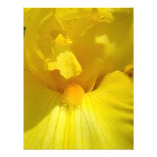 El iris amarillo florece el papel Scrapbooking del Membrete