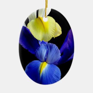 El iris azul y amarillo florece 4b ornamentos para reyes magos