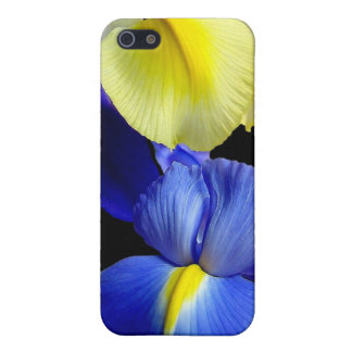 El iris azul y amarillo florece 4b iPhone 5 coberturas