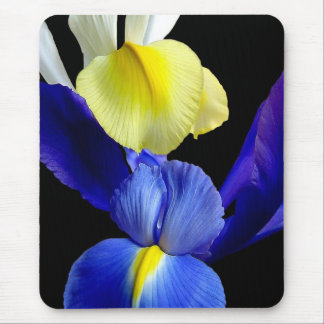 El iris azul y amarillo florece 4b tapetes de ratones