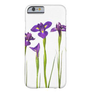 El iris colorido de la flor púrpura de los iris funda de iPhone 6 barely there