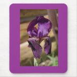 El iris de Terri Alfombrilla De Ratón