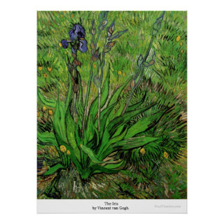 El iris de Vincent van Gogh Impresiones