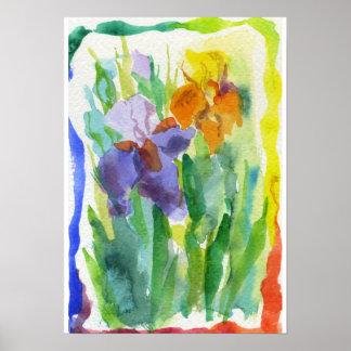 El iris florece la pintura del arco iris póster