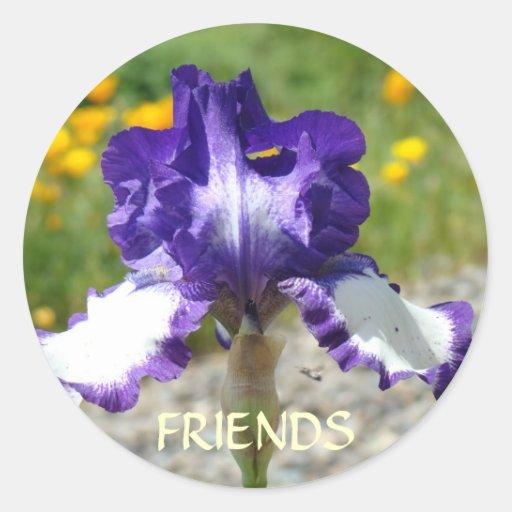 El iris púrpura de los PEGATINAS del MEJOR AMIGO Etiquetas Redondas