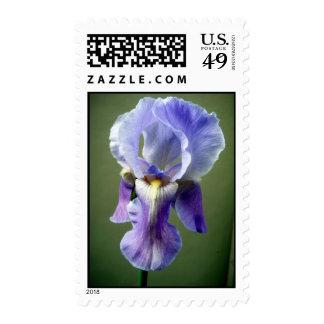El iris se va volando franqueo