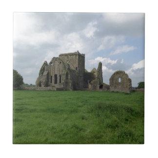 El irlandés de la abadía de Irlanda Hore arruina Azulejo Cuadrado Pequeño