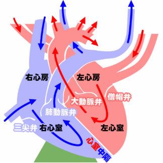 El japonés simple del corazón esculturas fotograficas