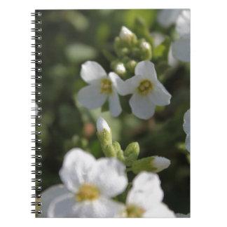 El jardín blanco fresco del verano florece y el libro de apuntes con espiral