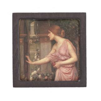 El jardín del Cupid que entra de la psique Caja De Regalo De Calidad