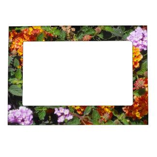 El jardín florece el marco magnético de la foto marcos magneticos para fotos