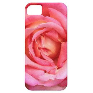 El jardín inglés coralino rosado subió la caja/la iPhone 5 Case-Mate protector