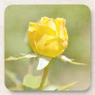 El jardín romántico florece el rosa amarillo posavaso