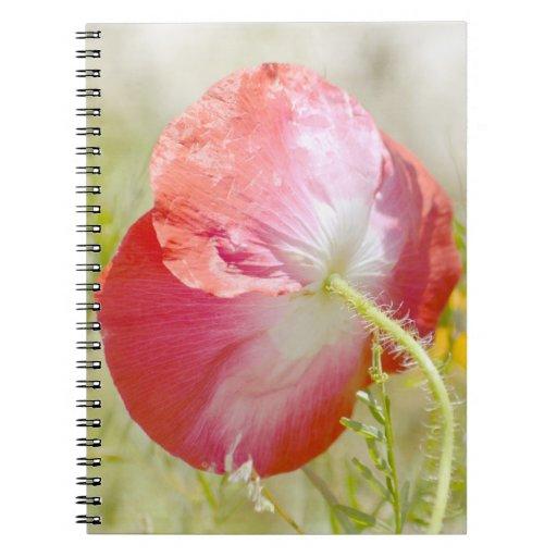 El jardín romántico florece la amapola roja cuaderno