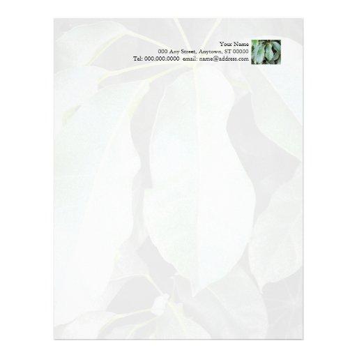 El jardín sale del papel con membrete plantilla de membrete