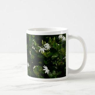 El jazmín florece la taza