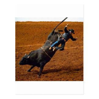 El jinete de Bull Tarjetas Postales