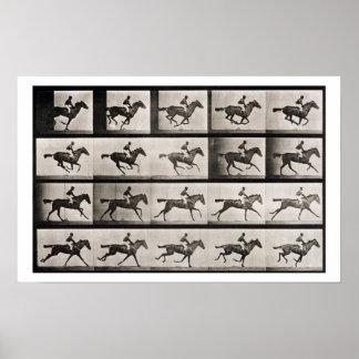 El jinete en un caballo galopante, platea 627 de ' póster