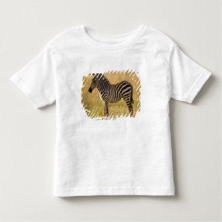 El joven aclara el quagga del Equus de la cebra) Playera De Bebé