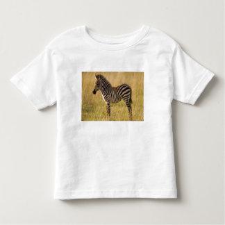 El joven aclara el quagga del Equus de la cebra) Remera