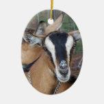 El joven alpino de la cruz de la cabra de Oberhasl Ornaments Para Arbol De Navidad